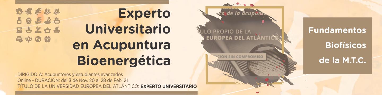 Experto Universitario en Acupuntura Bioenergética